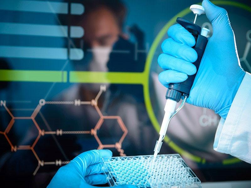 Admission is Open to Master's Program in Molecular Biology at Khazar University